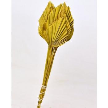 Spades Spears Palm jaune